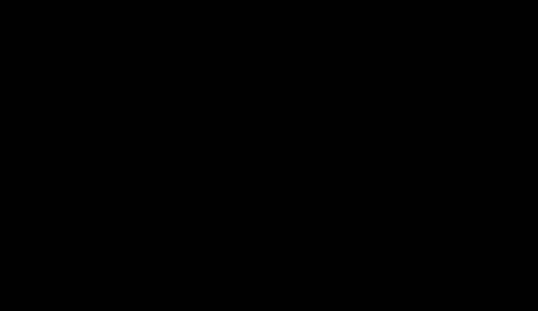 Baumwollweiß & Holunderblüte